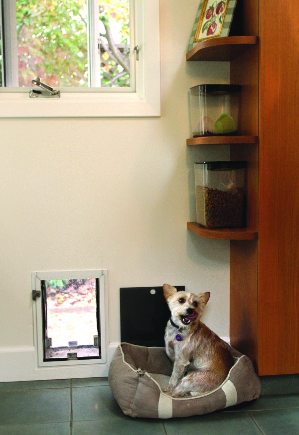 Pet doors the ins and outs for Dog bed beside bed