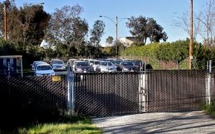 Dealership Brings Its Fleet To Palo Alto Animal Shelter Lot. City Agreement  Gives Anderson Honda ...