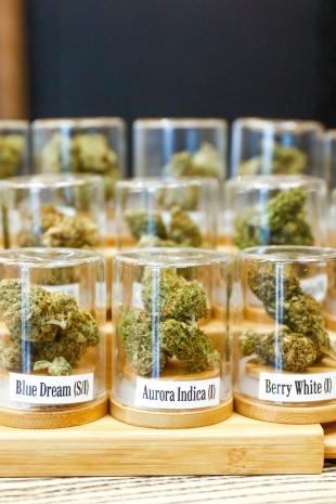 Cities rush to prepare for new marijuana era | News | Palo Alto Online |